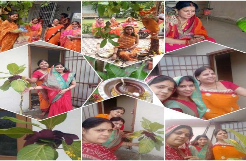 Vat Savitri Vrat 2021 : पति की दीर्घायु के लिए महिलाओं ने की वट वृक्ष की पूजा