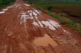 10 साल से 2 किमी सड़क निर्माण में फंसा पेंच  24 गांव के ग्रामीण परेशान