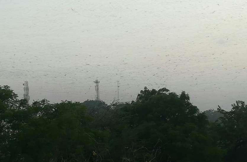 जयपुर में तेज हवा और धूल भरी आंधी