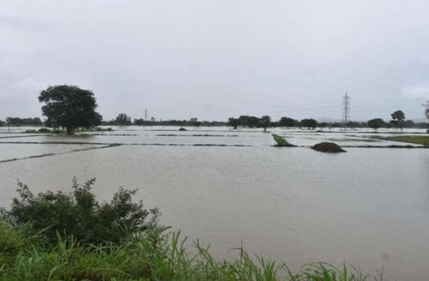 फिर मंडरा रहा बाढ़ का खतरा