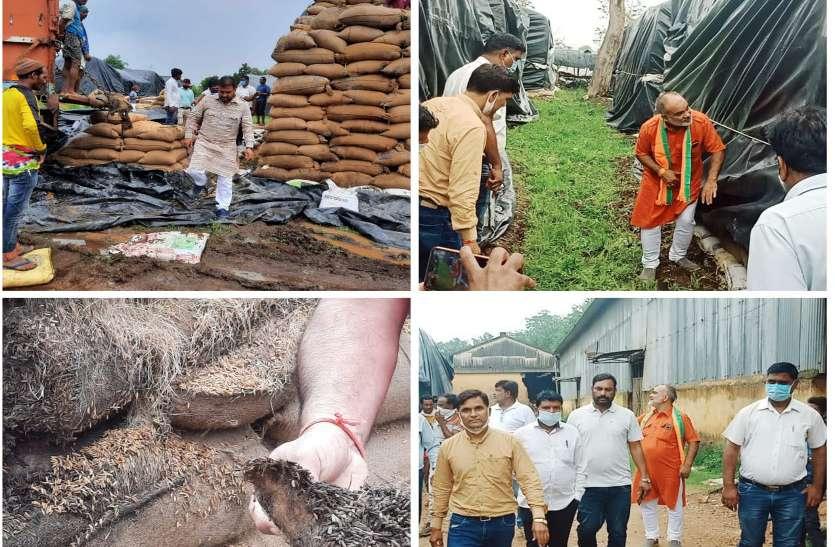 भाजपा बोली- सरकार की लापरवाही से संग्रहण केंद्रों में खराब हो रहा धान, 8000 क्विंटल धान का अता-पता ही नहीं