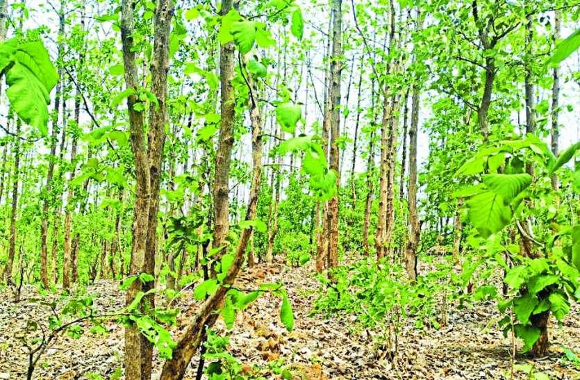 Smuggling: 25 वर्षों तक पाला पोसा, अब तस्करों का बन रहे निशाना