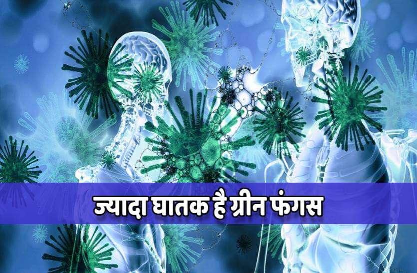 Green Fungus: ये लक्षण दिखें तो न करें नजरअंदाज तुरंत करें डॉक्टर से संपर्क
