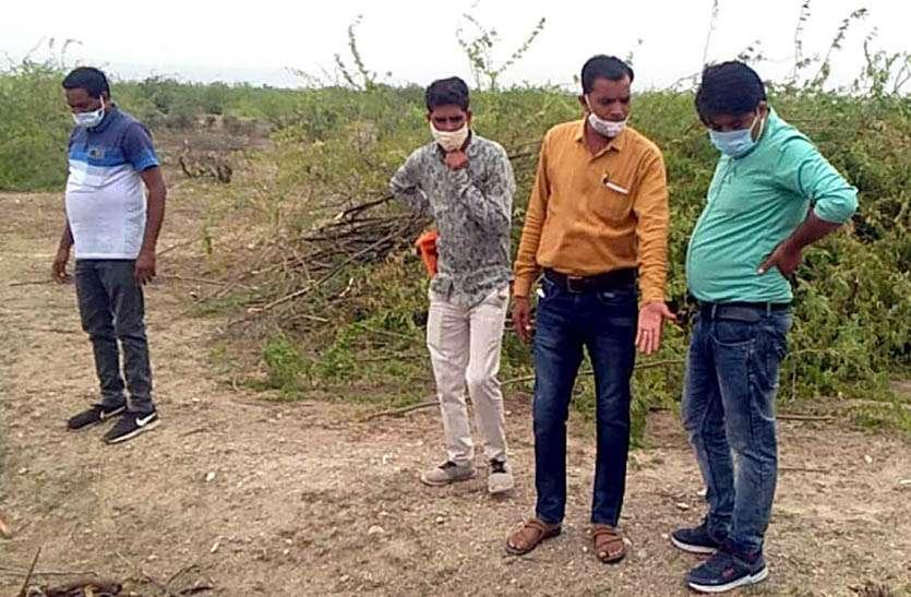दूनी में शुरू हुआ चरागाह विकास कार्य, 20 बीघा चरागाह भूमि पर लगेंगे 2 हजार फलदार पौधे