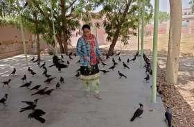 पति-पत्नी का पक्षियों के साथ अनूठा प्रेम