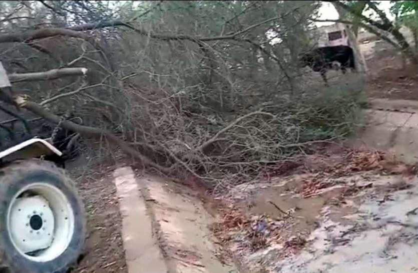 अंधड़ से नहरों में गिरे पेड़, टूटने की आशंका
