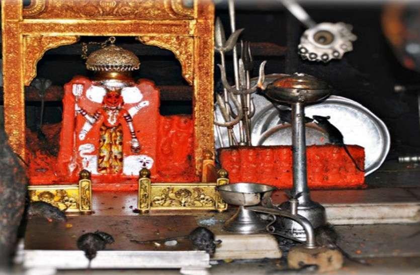 Rajasthan Karni Mata Temple