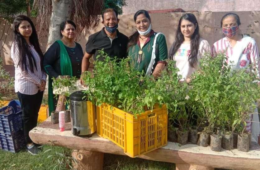 हाउसिंग बोर्ड में 151 तुलसी व 51 मीठी नीम के पौधें वितरित