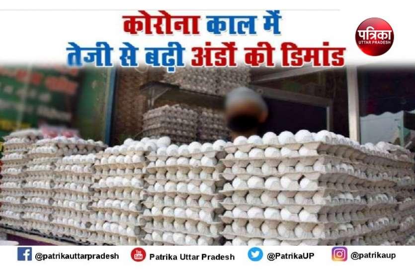 कोरोना का खौफ रोजाना सवा करोड़ का अंडा खा रहे वाराणसी व आसपास के लाेेग