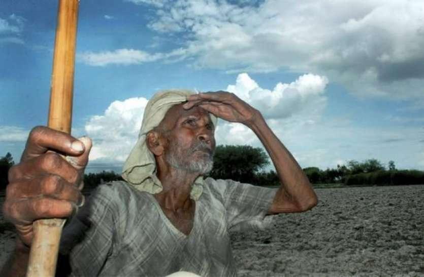 किसान के लिए खुशखबरी, अब बंजर पड़ी जमीन पर भी कमाई कर सकते हैं धरती पुत्र