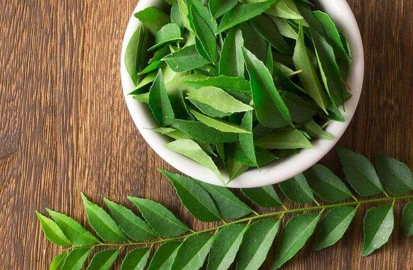 Curry Leaves :- पोषक तत्वों से भरपूर है करी पत्ता, इस तरह करें घर में उपयोग
