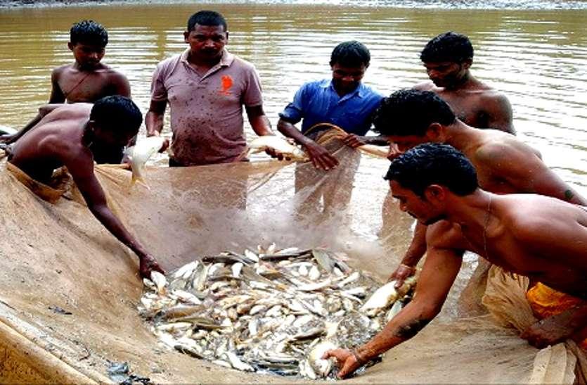 मछली पालन का झांसा, हरियाणा की कंपनी ने CG के 48 किसानों को लगाई 3 करोड़ की चपत, सदमे में एक किसान की मौत