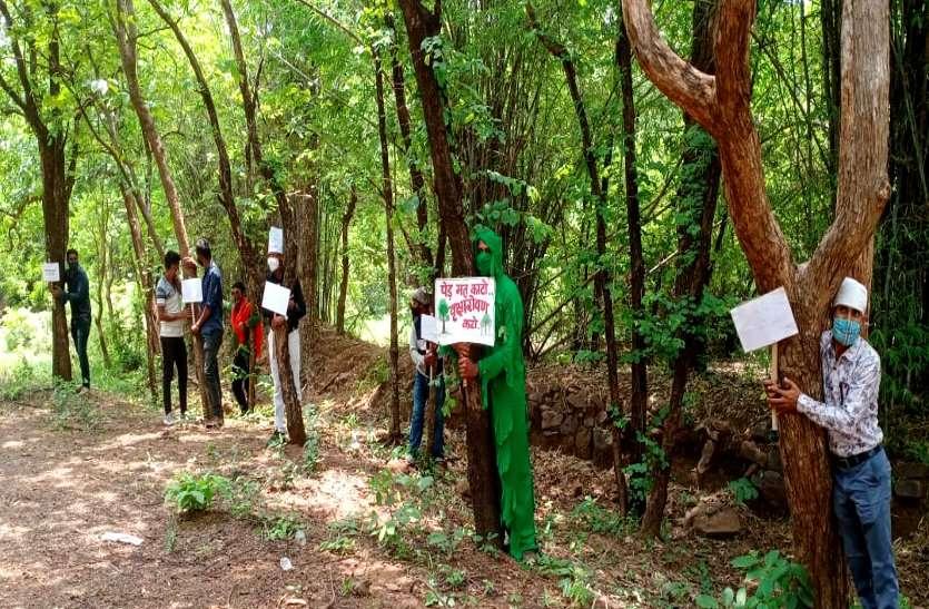 3000 पेड़ों को कटने से बचाने छत्तीसगढ़ के इस जिले में शुरू हुआ चिपको आंदोलन, लोगों ने कहा सांसों की नहीं देंगे बलि
