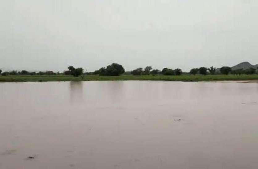 अलवर जिले में पिछले 15 घंटों से लगातार हो रही बारिश, खेत हुए लबालब, घरों में घुसा पानी