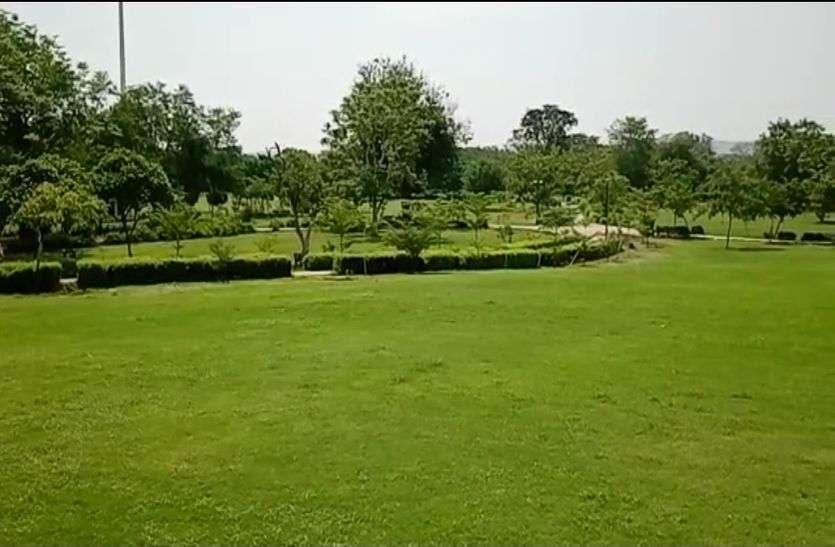 JAIPUR सेन्ट्रल पार्क, रामनिवास बाग सहित बड़े पार्कों में लगेंगे 25000 पौधे