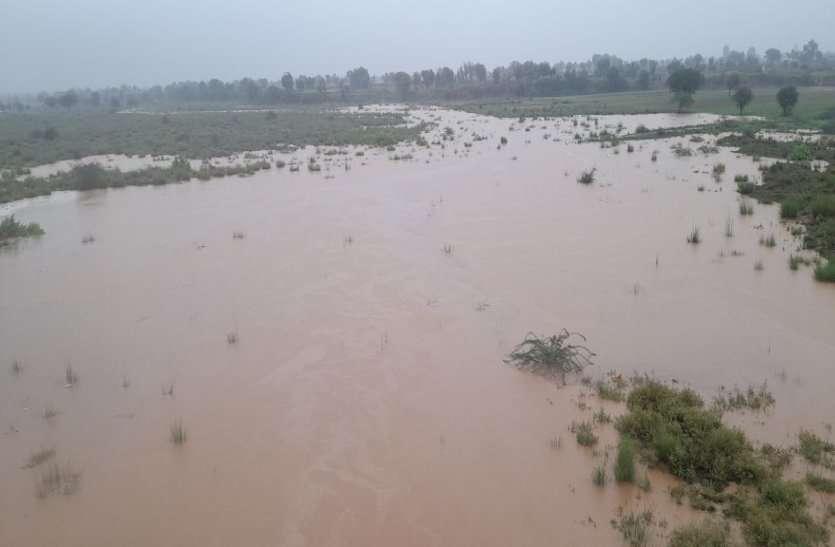अलवर में दो दिन झमाझम के बाद रुकी बारिश, बांधों में आया पानी, जानिए किस क्षेत्र में कितनी बरसात हुई