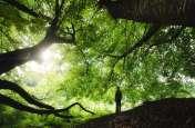 Spiritual Tips: धार्मिक हुए बिना आध्यात्मिक कैसे बनें