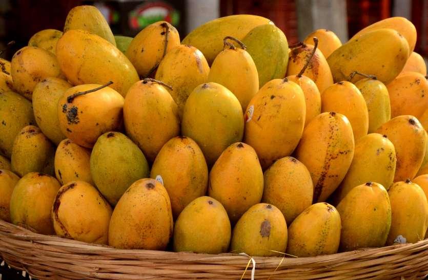 Mango Day: कभी होते थे रसीले आम, अब रह गया सिर्फ नाम..