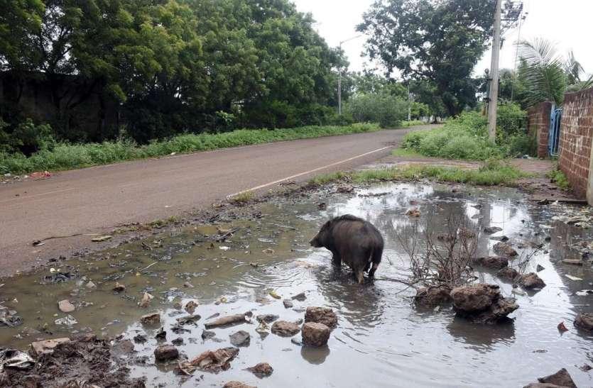 समस्याओं से जूझ रहे हैं बीदर जिले के चारों औद्योगिक क्षेत्र