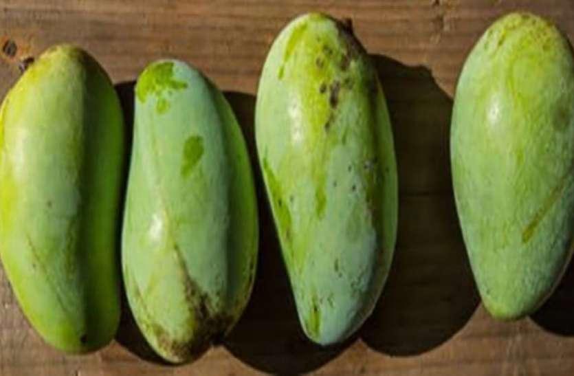 MANGO DAY SPECIAL---हर रोज 8 ट्रक आम खा जाते है जोधपुरवासी
