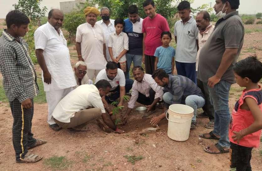 विभिन्न जगहों पर पौधरोपण, पर्यावरण संरक्षण का संकल्प