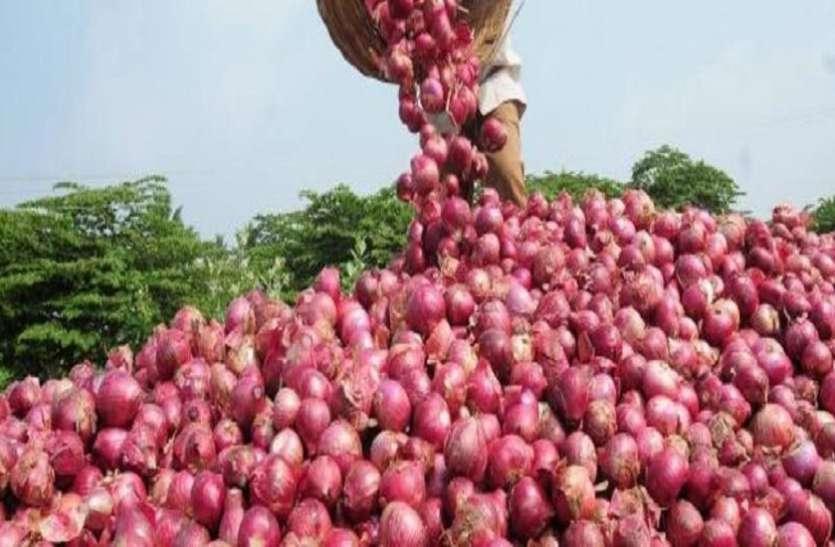 Ahmedabad News : 6 हजार हेक्टेयर में प्याज की खेती, सालाना दो सौ करोड़ का कारोबार