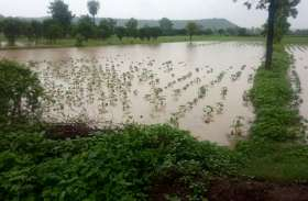 अधिक बारिश का असर: फसलों और खेतों को नुकसान
