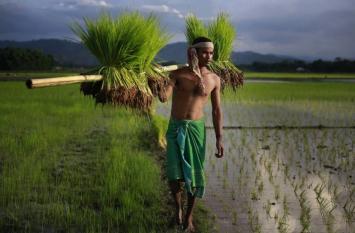 Agri Export Trend: ग्लोबल मार्केट में किसानों ने दिखाया दम, निर्यात के मामले में टॉप 10 में दर्ज कराया देश का नाम