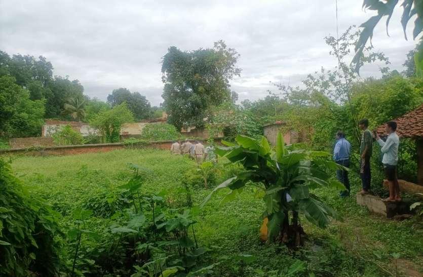 रिहायशी क्षेत्र में बाघ के बच्चे की सूचना, वन अधिकारियों ने बताया अफवाह
