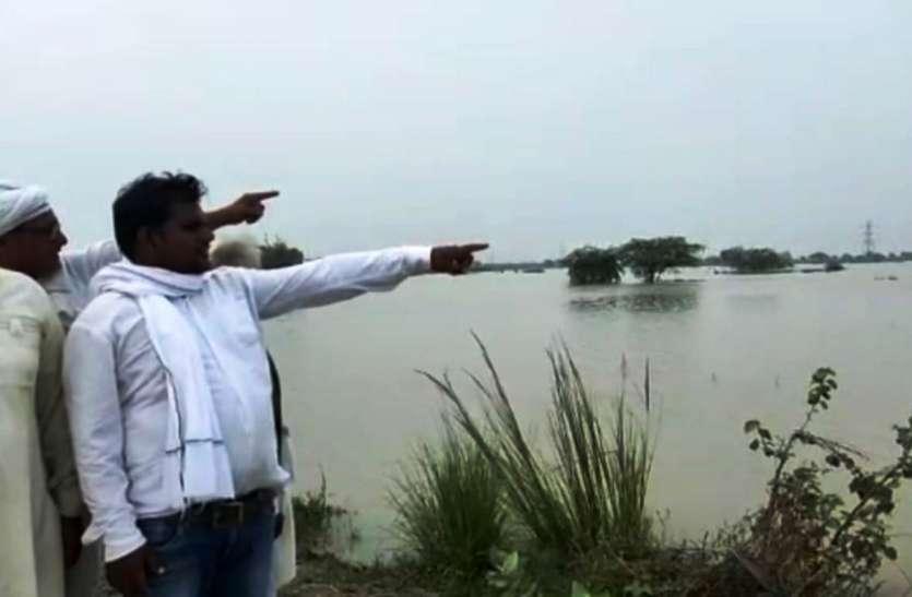नहर के पानी ने मचाई तबाही, 1700 बीघा धान की फसल नष्ट करने के बाद अब गांव की ओर बढ़ रहा पानी