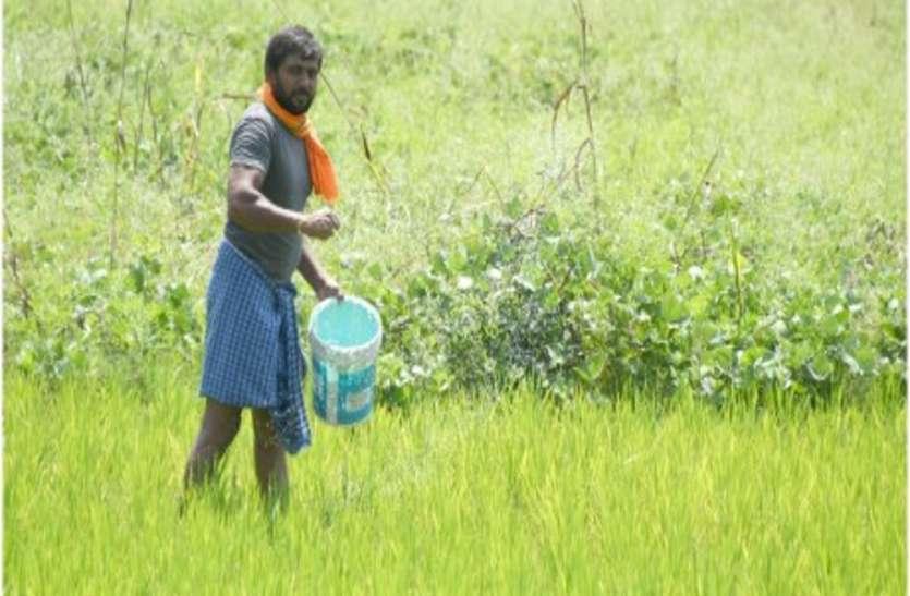 Gujarat: गुजरात के किसानों पर 90 हजार करोड़ से ज्यादा का कर्ज,  केन्द्र के ऋण माफी की कोई योजना नहीं
