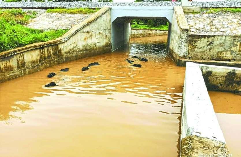 2 दिन बाद भी रेलवे पुलिया से नहीं निकला पानी