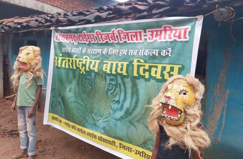 देवी देवताओं की तरह पूज्य है प्रकृति और बाघ