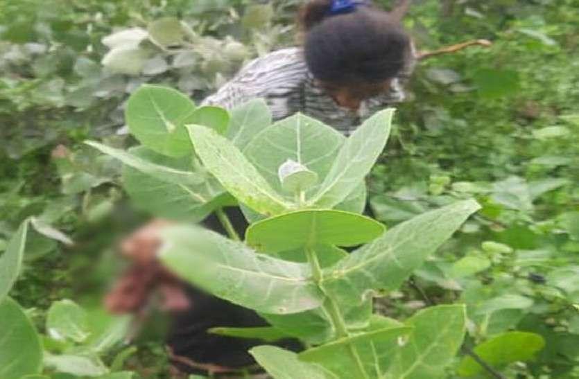झाड़ियों में बच्चे का जन्म, नवजात की हो गई मौत, मां की भी हालत खराब