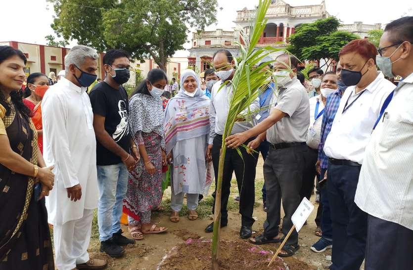 पौधे लगाकर किया गांधी वाटिका का निर्माण