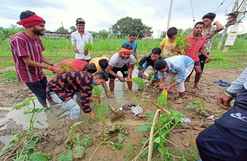 खेत में नहीं अधूरी सड़क पर धान रोपकर सरकार को दिखाया आईना, एक करोड़ स्वीकृत हुआ, 6 साल बाद भी पूरा नहीं हुआ काम