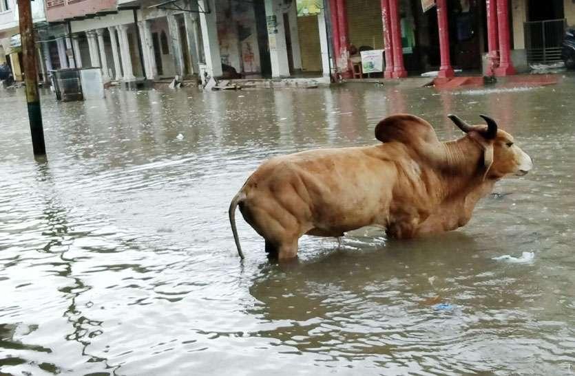 मालपुरा में सडक़ हुई जलमग्न, घरों व दुकानों में घुसा पानी