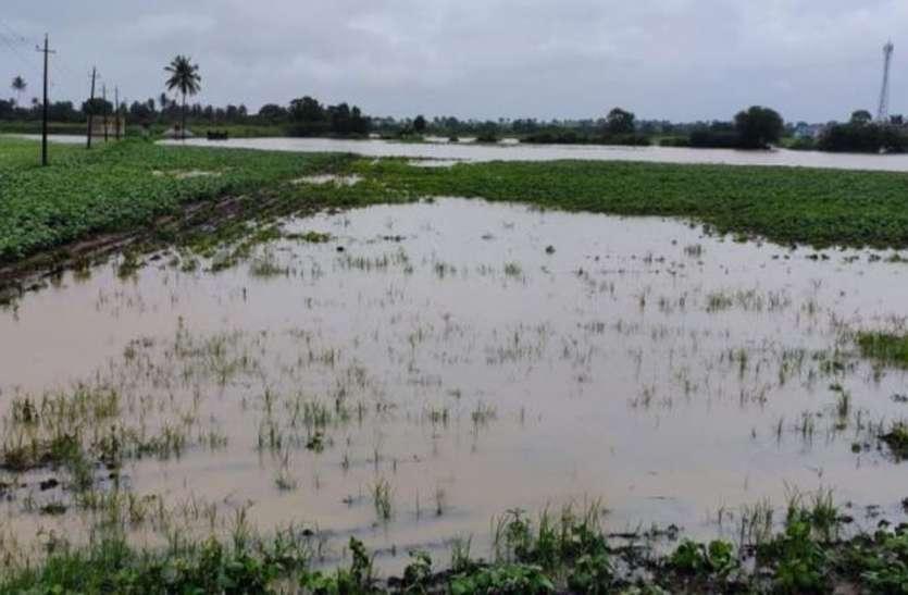 बारिश से बागवानी और कृषि फसल बर्बाद