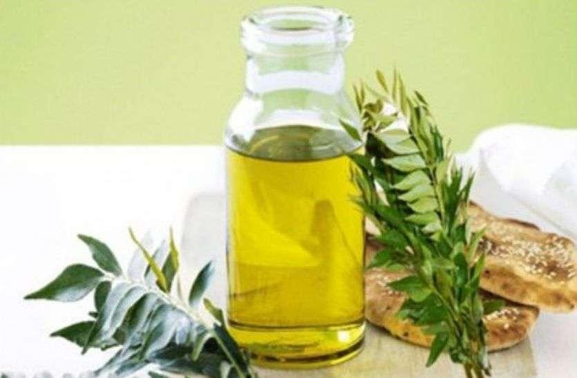 Curry leaf oil : करी पत्ते का तेल स्वादिष्ट होने के साथ ही सेहत के लिए भी फायदेमंद