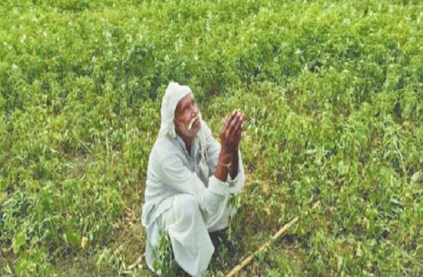 बारिश को तरसे 16 जिलों के किसान अब नए सिस्टम से उम्मीद