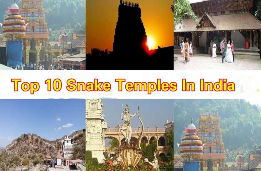 भारत के शीर्ष 10 सांप मंदिर