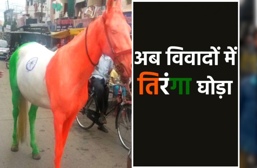 भाजपा रंग के बाद अब विवादों में आया तिरंगा घोड़ा, फिर एक्टिव हुई मेनका गांधी की संस्था