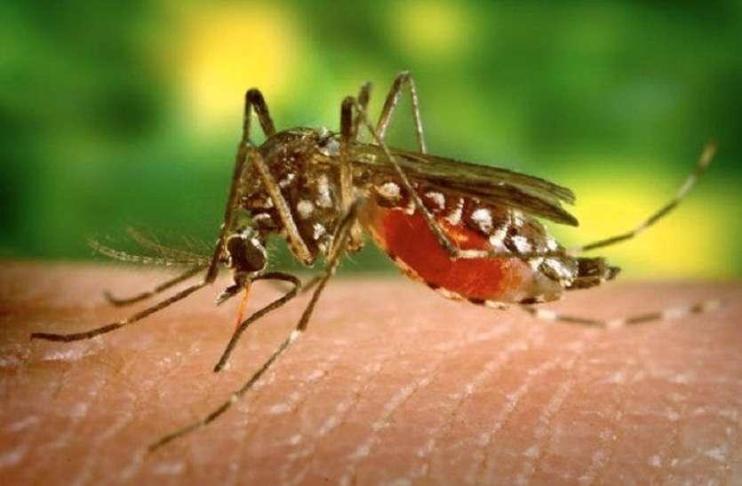 कोलकाता में बढ़ रहा मलेरिया का प्रकोप