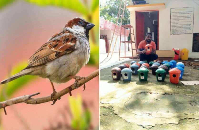 Save Birds Campaign: पक्षियों को बचाने के लिए युवाओं ने किया इस मुहिम का आगाज, बना रहे घरौंदा