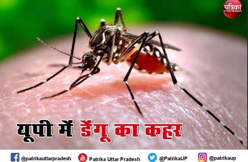 Meerut : 50 के पार पहुंचा डेंगू से पीड़ितों का आंकड़ा, वायरल के मरीजों की संख्या में तेजी से बढ़ोतरी