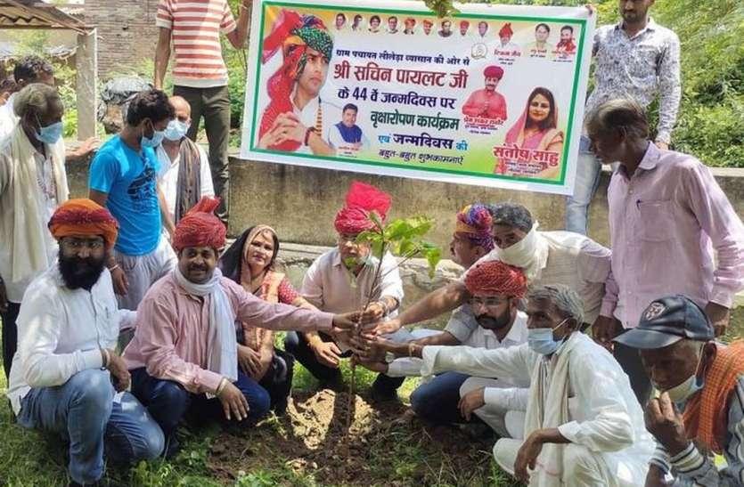 पायलट के जन्मदिन पर कांग्रेस कार्यकर्ताओं ने रोपे पौधे