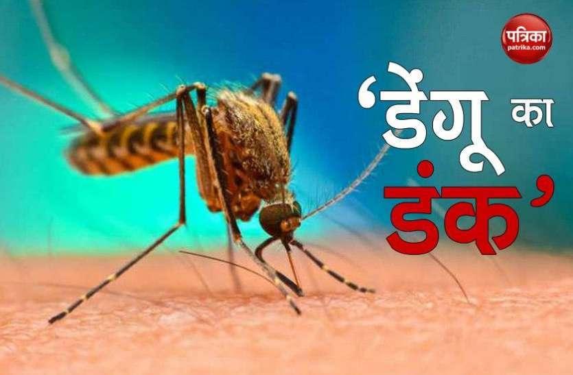 डेंगू का डंक: राजधानी में आंकड़ा 350 पहुंचा, 1 फरवरी को मिला था पहला मरीज