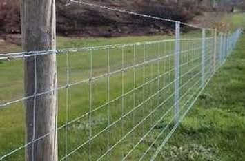 जानिए, क्या है 'तारबंदी योजना', किस तरह फायदा उठा सकते हैं किसान...