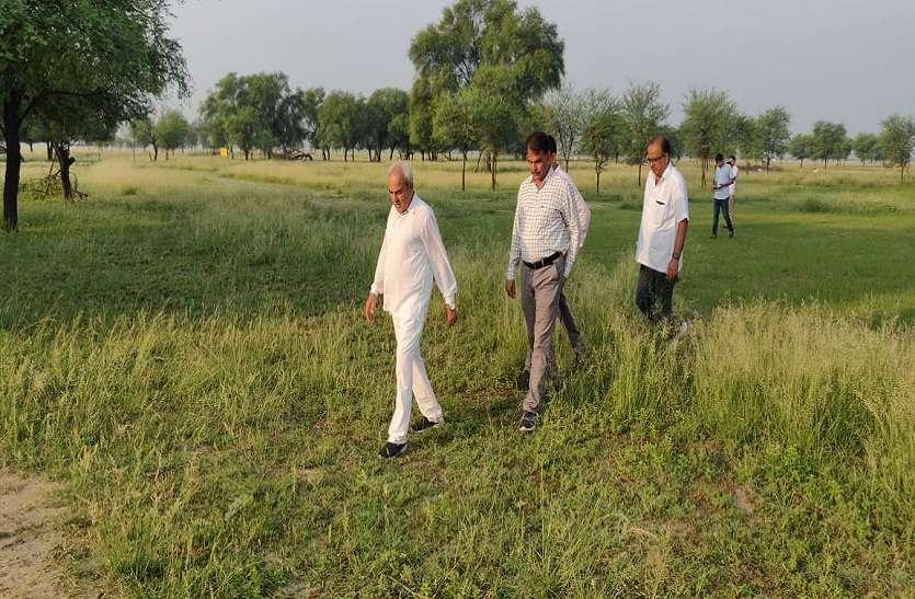 कृष्ण मृग संरक्षण के लिए अधिकारी करें गम्भीर प्रयास: वन मंत्री