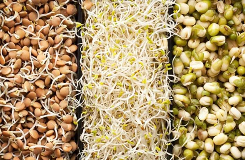 Benefits of Sprout:  सुबह खाली पेट स्प्राउट्स खाने से मिलेंगे कई शानदार फायदे